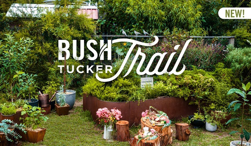 Bush Tucker Trail