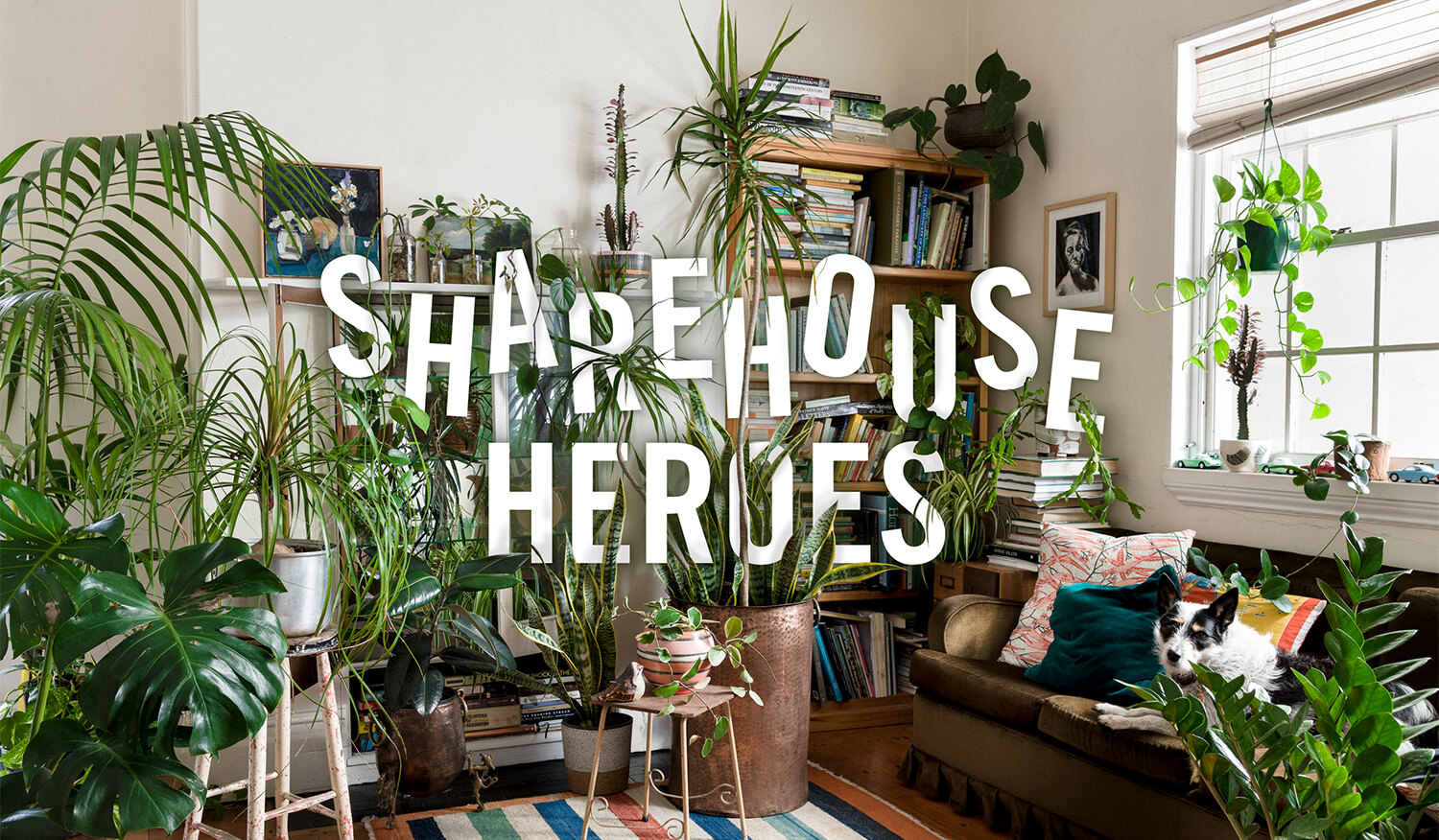 Sharehouse Heroes